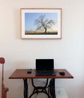 Aussie oak frame