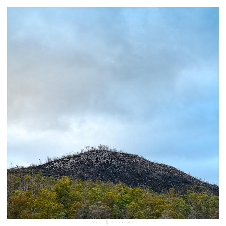 Bushfire affected mountain top