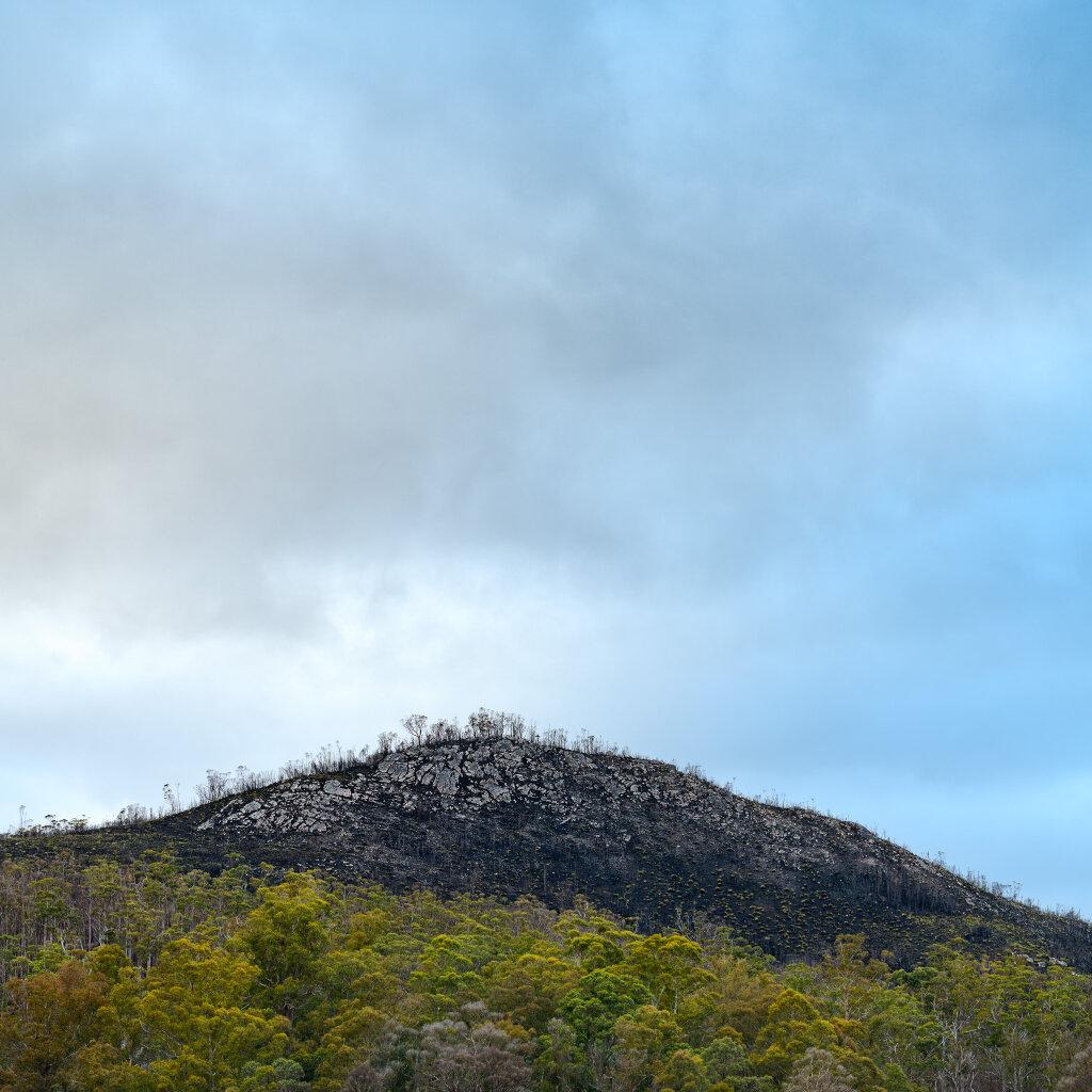 Bushfire affected peak
