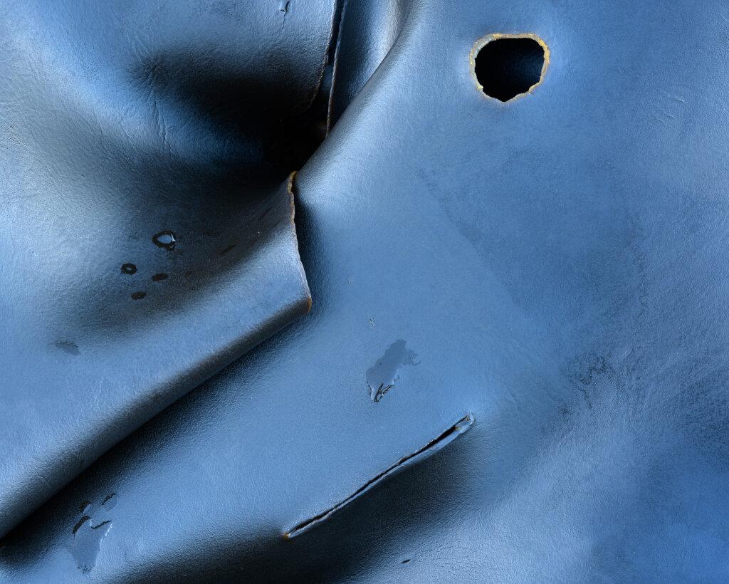 Kelp Folds